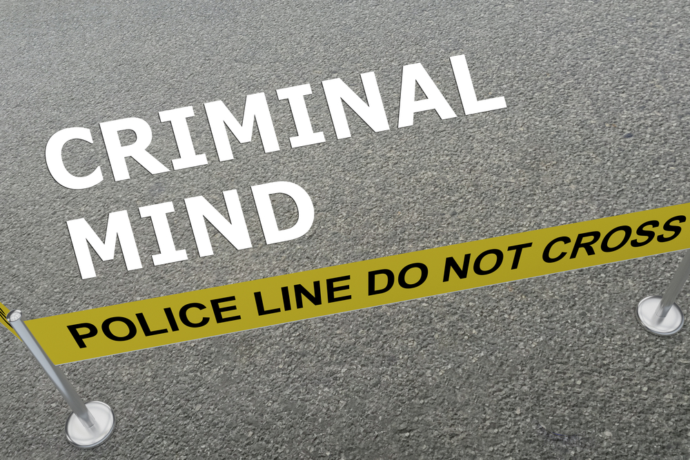 criminal minds, understanding criminals, criminal psychology, motivations of criminals, criminals motives